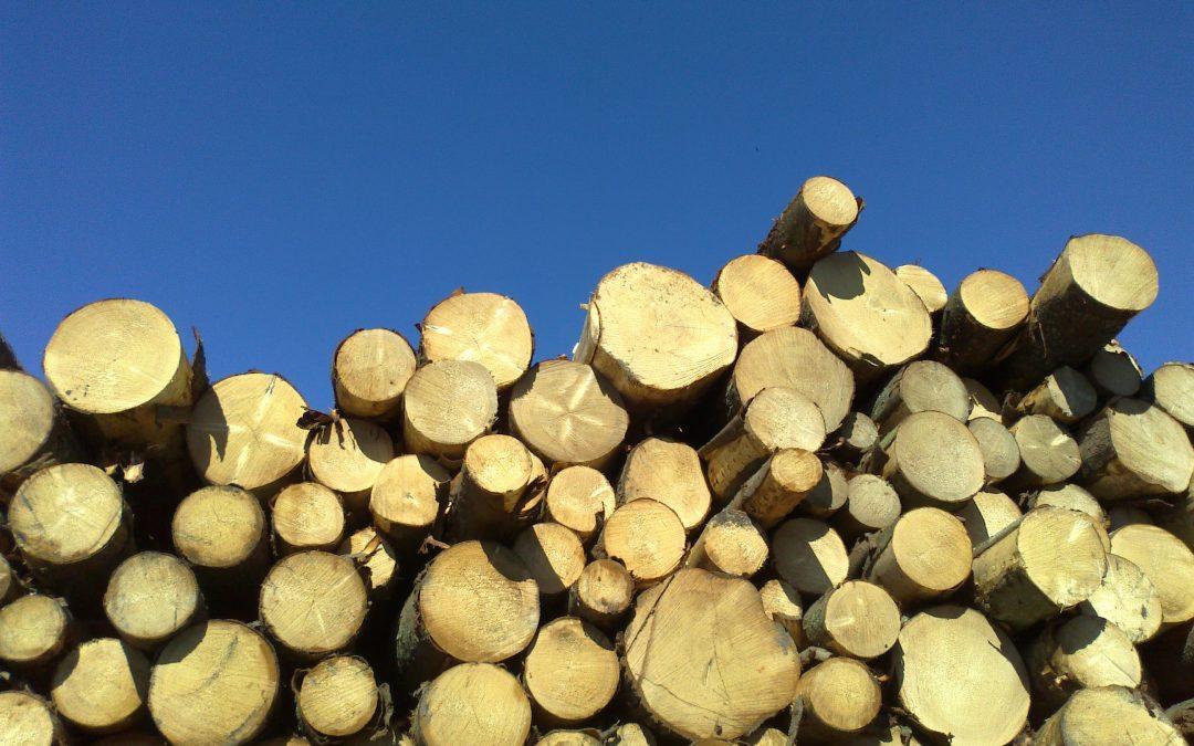 PBL op zoek naar gedeelde feiten en opvattingen biomassa