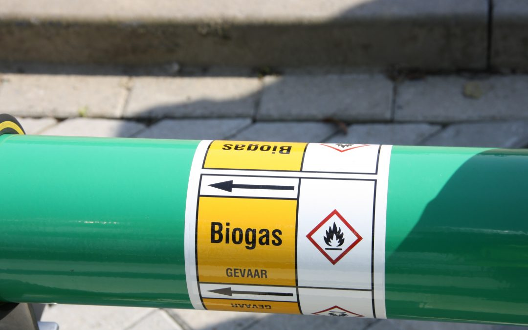 Biogas direct op gasnet