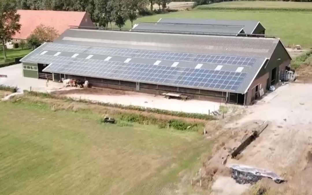 Deze boeren halen energie uit mest, melk of kleine molens