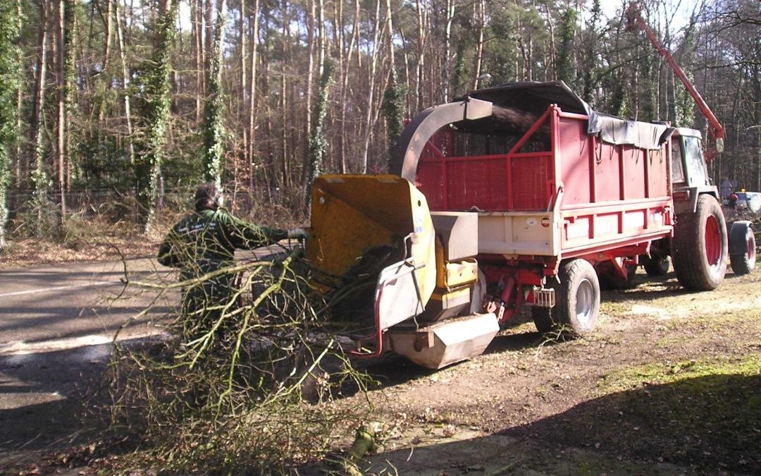 Biomassa veel beter dan aardgas voor het milieu