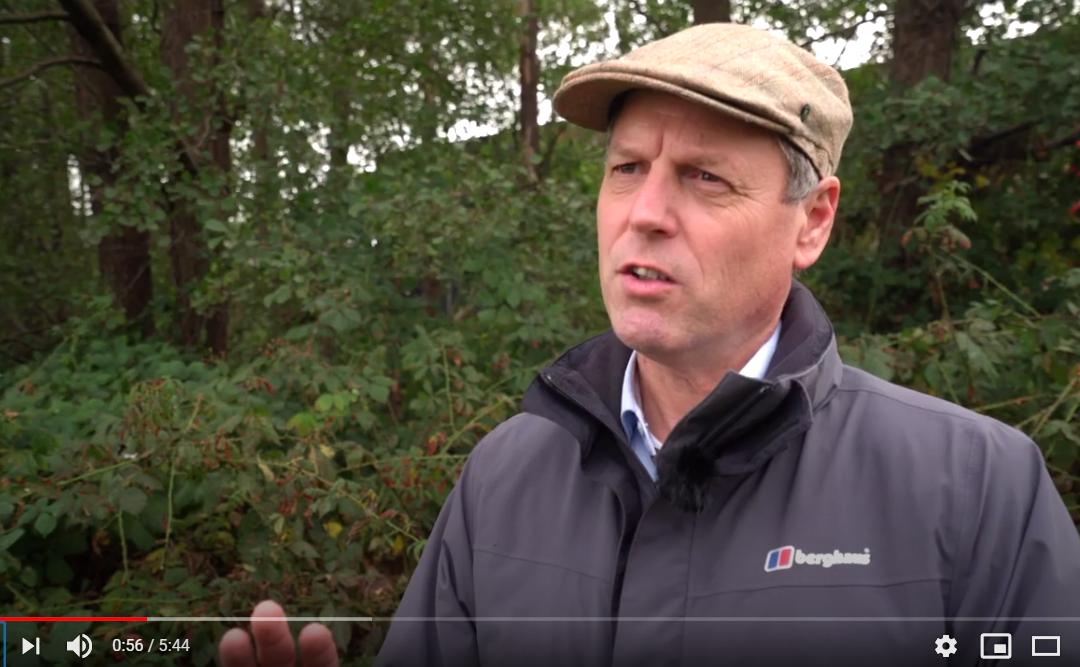 Explainer over bio-energie in Overijssel