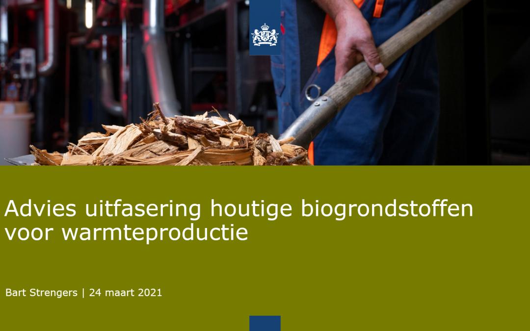 Bart Strengers (PBL) over houtige biomassa: uitfaseren nog zeer onverstandig