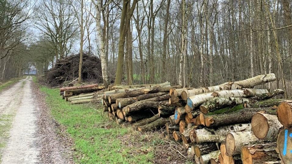 Gedragscode Biomassa