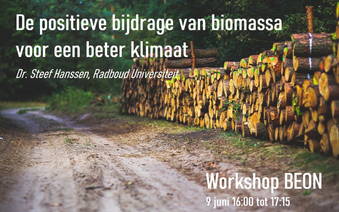 De positieve bijdrage van biomassa: voor een beter klimaat