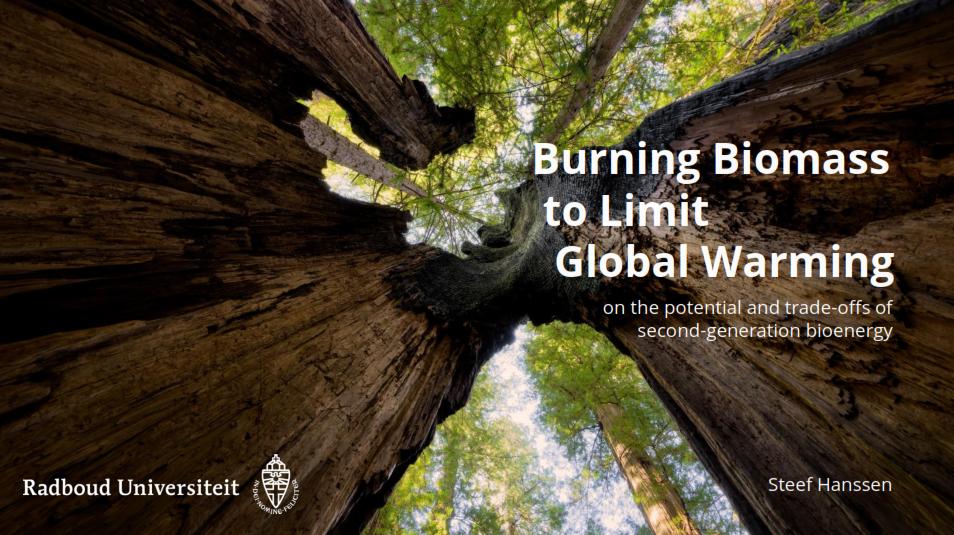Biomassa draagt bij aan vermindering uitstoot CO2